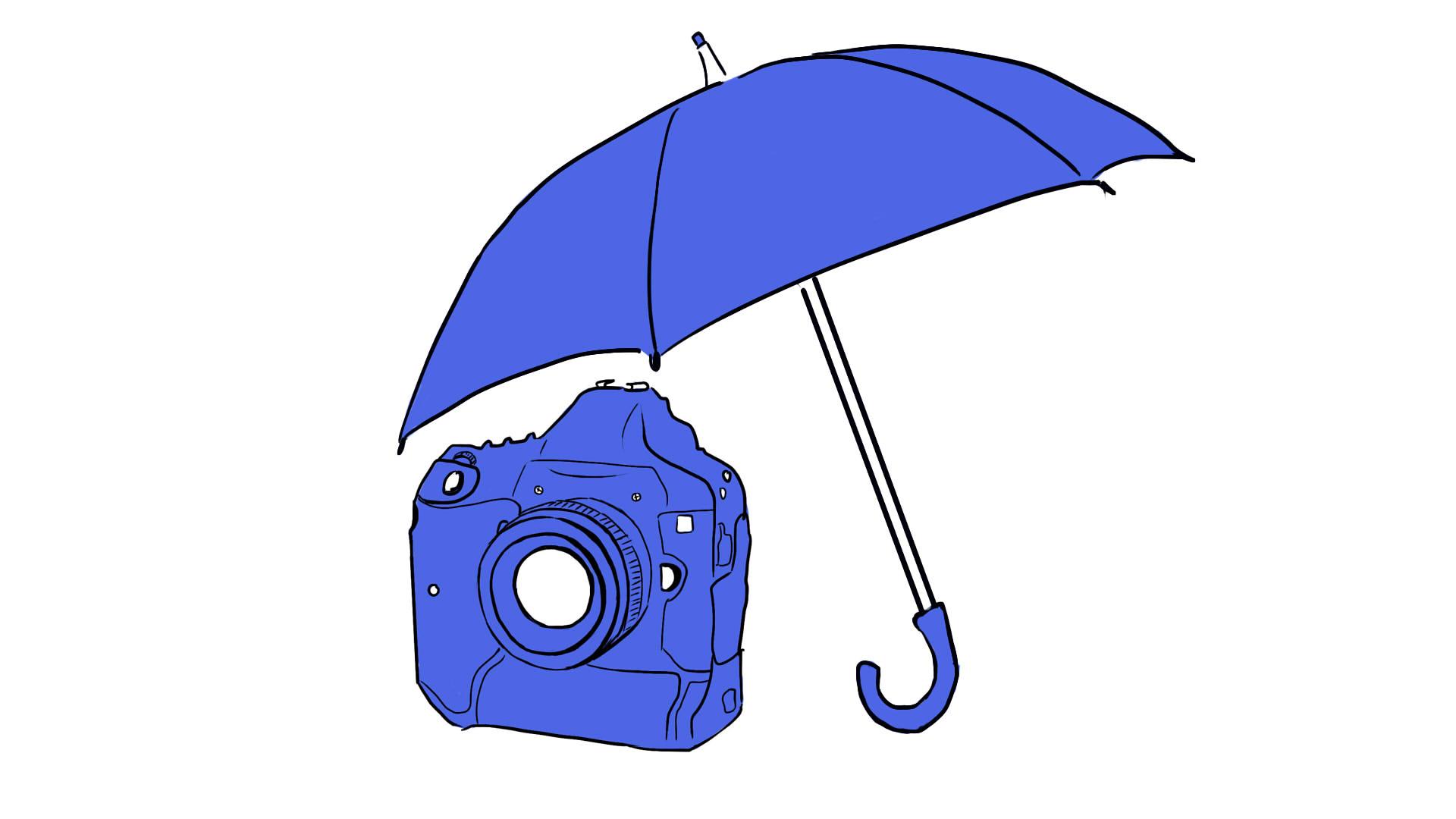 Страхование фотоаппарата онлайн: где и как застраховать камеру Canon 1Dx