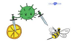 Витамин С и пчелиный яд против COVID-19 - реально?