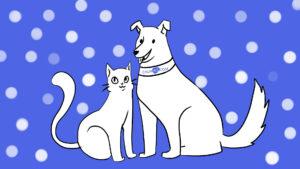 Сколько может стоить страховка для домашних животных?