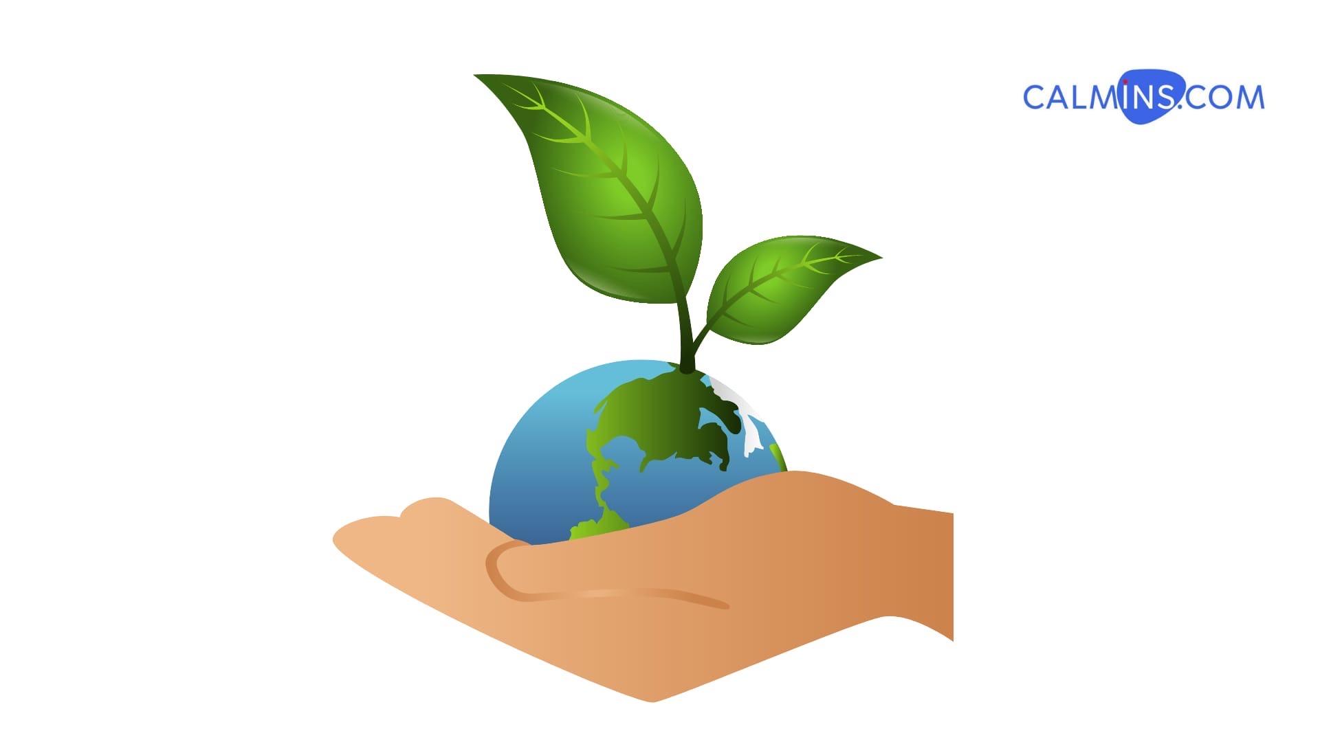 Экологическое страхование - новый хайп?