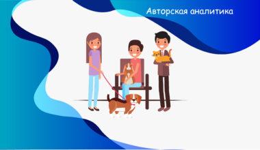Застраховать собаку и кошку - экспертное мнение