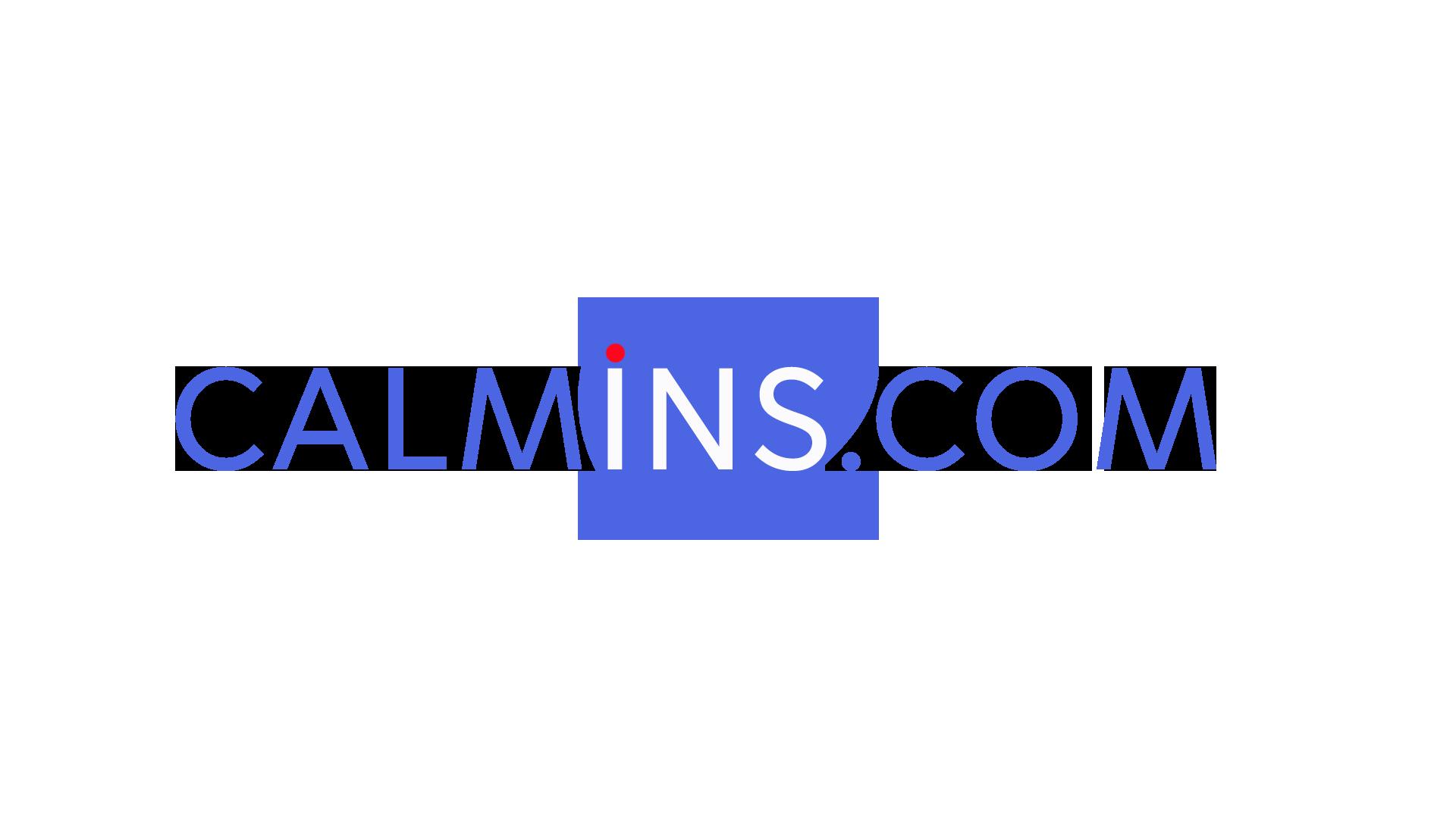 Calmins.com : как начать свое дело, или от идеи до 100 000 аудитории