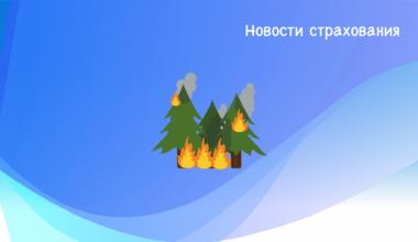 Климатические вызовы: Россия и мировое сообщество