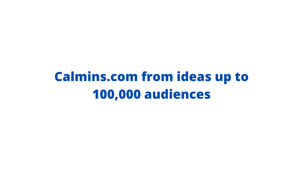 Calmins.com from ideas up to 100,000 audiences